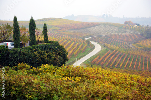 Foto op Canvas Wijngaard panorama of autumn vineyards