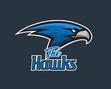 Vector Falcon Head Sports Logo...