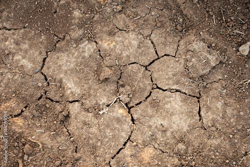 Fotografie, Obraz  Crepa nella terra arida