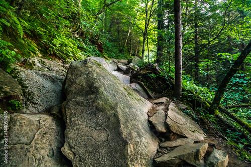 Valokuva  The Appalachian Trail