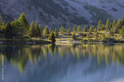 Aviolo lake, Adamello natural park, Camonica valley, Lombardy, Italy. Larches at mirror.