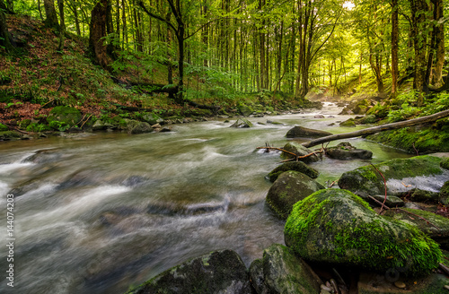 Printed kitchen splashbacks River Rapid stream in green forest