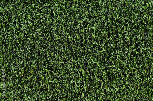 Plastic green grass. Football turf Wallpaper Mural