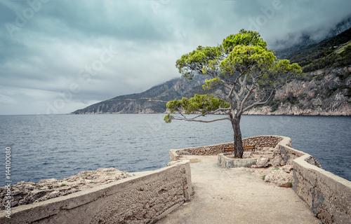 Fototapeta Hvar island, Croatia obraz na płótnie