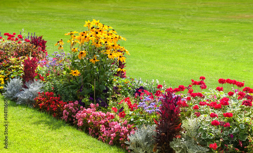 Fotografia Bright flowers on the flower bed