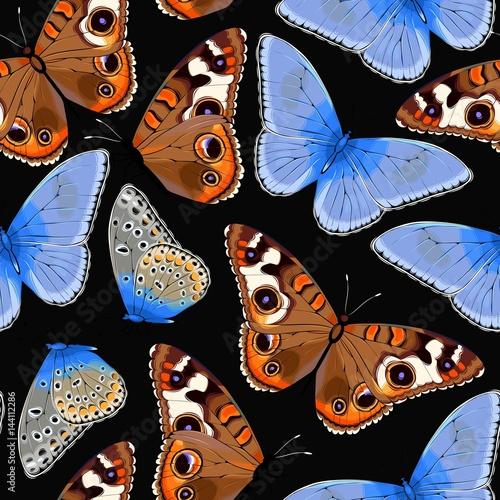 varicolored-butterflies-seamless