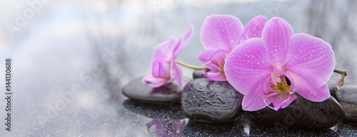 Pink orchid and basalt stones on the black background.