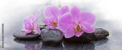 trzy-rozowe-orchidee-i-czarne-kamienie-zamykaja-sie