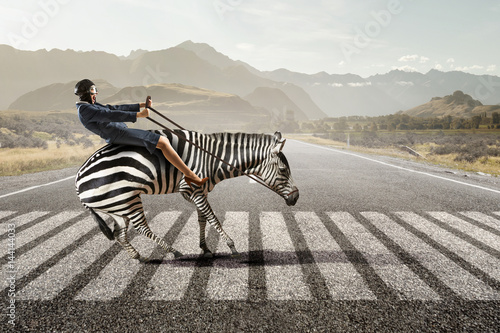 Fotografia, Obraz Businesswoman ride zebra . Mixed media