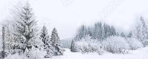 winter #144165264