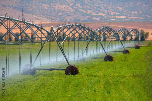 Fotomural  An irrigation pivot watering a flower field