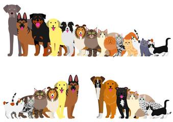 Granica psów i kotów ułożonych w kolejności wzrostu