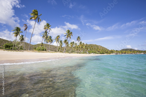 The long beach surrounded by palm trees and the Caribbean Sea Carlisle Morris Bay Antigua and Barbuda Leeward Island West Indies