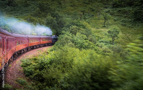 Train passing through forest