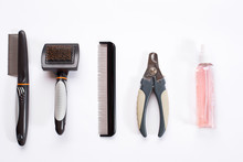 Acessories For The Grooming Of The Dog. Combs And Brushes For Dogs. Top View