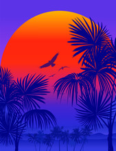 Vectot Tropical Sunrise