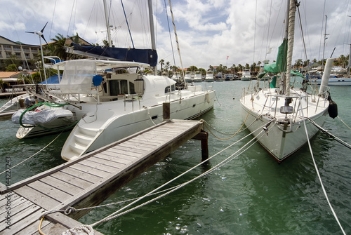 Catamaran and a sailboat moored at the port of Aruba on a sunny day Poster