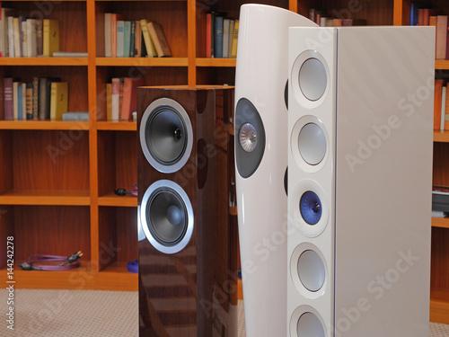 Audiophile HiFi speakers in the listening room. Canvas Print