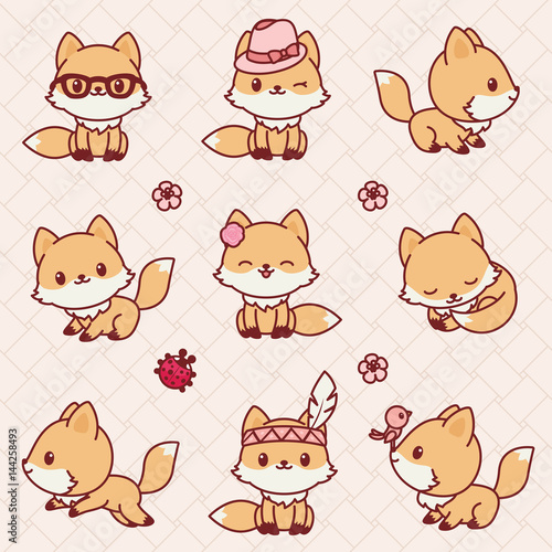 Photo  Kawaii foxes