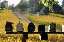 Mail Delivered To Mailboxes In Sonoma County