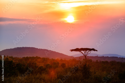 Poster Afrique Sunset in Nyika National Park - Malawi