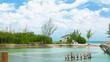 Caribbean Coral Island