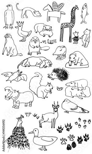 Photo  animals ilustration set