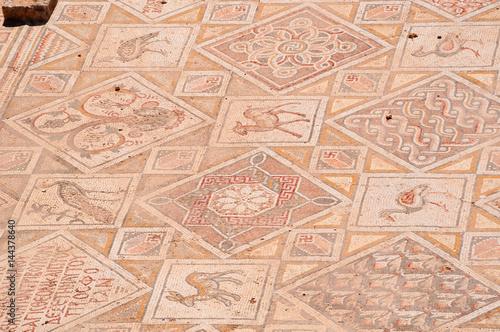 Fotobehang Midden Oosten Giordania, 04/10/2013: dettagli dei mosaici delle chiese bizantine trovati a Jerash, l'antica Gerasa, uno dei più grandi e meglio conservati siti di architettura romana al mondo