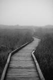 Drewniana ścieżka we mgle - 144391672