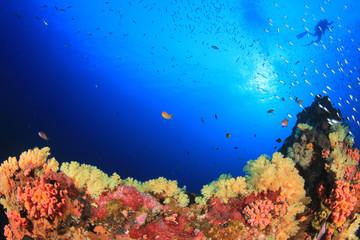 Fototapeta na wymiar Scuba diver swims over coral reef in ocean