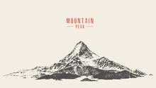 Vector Mountain Peak Pine Fore...