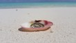 v00953 Maldives beautiful beach background white sandy tropical paradise island with blue sky sea water ocean 4k seashell gold ring