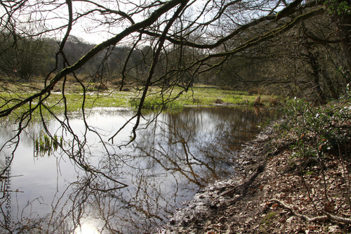Photo Biotope, Nature conservation, Blumenthal, Lower Saxony, Germany, Europe