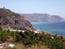 Acantilados De Maro - Cerro Gordo