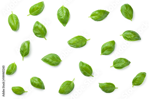 Leinwand Poster Basil Leaves Isolated on White Background