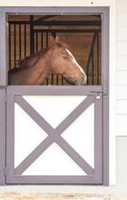 Horse Door