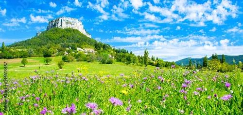 Keuken foto achterwand Lime groen Paysage de l'Ardèche en Provence, France