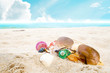 Sunglasses and seashell on the sandy tropical beach with clear blue sky. Leisure in summer and Summer vacation concept.