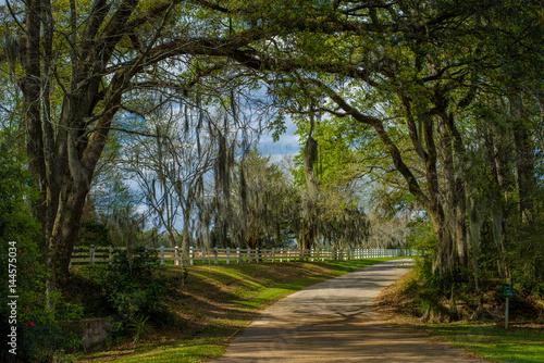 entrance rosedown plantation, louisiana