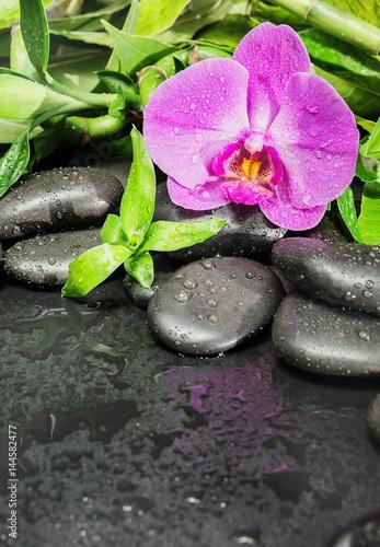 zdroju-pojecie-z-zen-kamieniami-storczykowym-kwiatem-i-bambusem