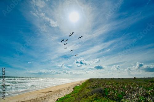 Valokuvatapetti Anastasia State Park, St Augustine, Florida