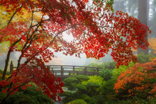Fall Colors By The Moon Bridge...