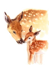Mother And Baby Deer Watercolo...