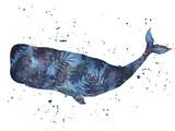 Akwarela wieloryba. Ilustracji wektorowych - 144635093