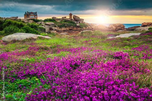 Cadres-photo bureau Cote Atlantic ocean coast in Brittany region, Ploumanach, France, Europe