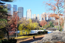 Central Park In The End Of Autumn, New York, USA