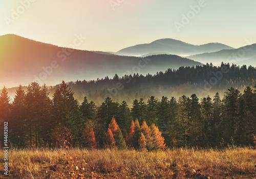 amazing-mountain-landscape-with-fog-beskid-mountains-poland-mountains-scenery