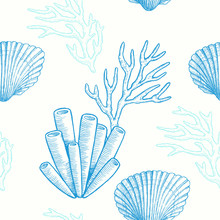 Marine Life. Vector Seamless Pattern With Hand Drawn Sea Natural Elements