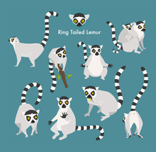 Ring Tail Lemur Animal Flat Design Illustration Set