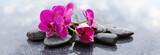 Fototapeta Kwiaty - Pnk orchids and black stones close up.